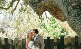 Hartley Botanica Wedding